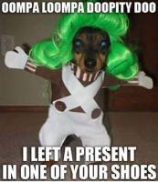 Laitoin lahjan sulle...