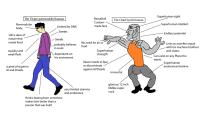 Virgin vs. Chad