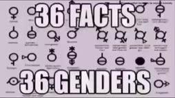 36 faktaa 36 sukupuolesta