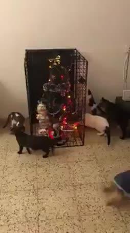 Joulu turvattu