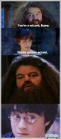 harry, you wasnt wizard