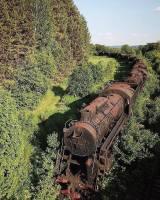 Unohtunut juna