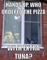 Tilasi pizzan