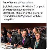 Suomen tuhoajat.