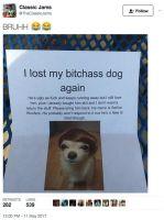 Koira ja sen omistaja