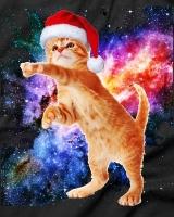 Space cat :3