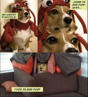 Operaatio doggo