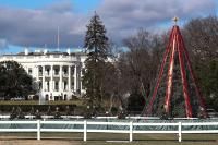 Amerikan virallinen joulukuusi