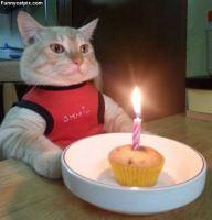 Its Mah Birthdays