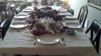 Pöytä on katettu