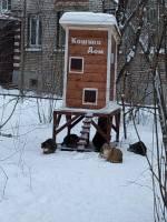 Kissojen talo