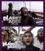 uus planeetta