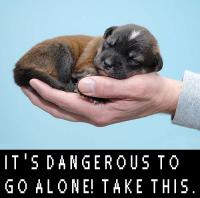 Vaarallista mennä yksin