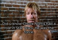 May The Chuck Norris Be With You