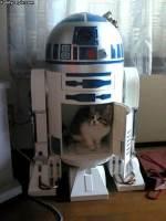 R2-D2:n näyttelijä paljastettu