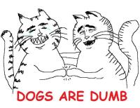 Dogs are dumb :D