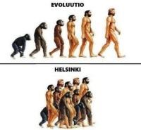 Helsinkiläisten alarotu