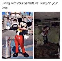 Oma koti liian kallis