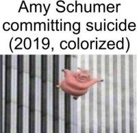 Amy Shcumer