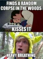 Nyt kaikki metsään ?