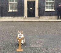 Uusi Britannian pääministeri