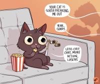 Kissen luonto-ohjelma