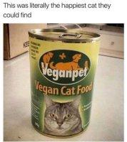 Vaikka itse oletkin kani niin kissasi ei välttämättä ole