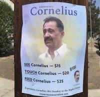 Koe Cornelius
