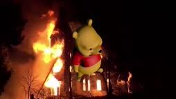 tuli palo
