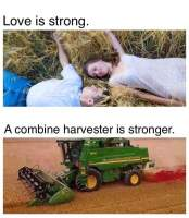 Love is strong!