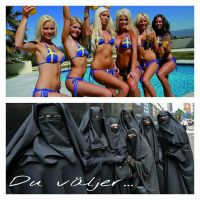 Vaikka en ruotsista pidäkkään, mutta kuumista naisista kyllä