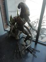 Alien in Riksu