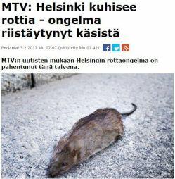 Hesessä rottaongelma
