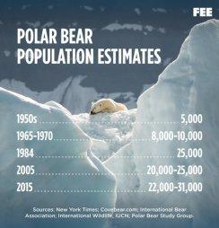 Ilmastonmuutos. Jääkarhut kuolee..